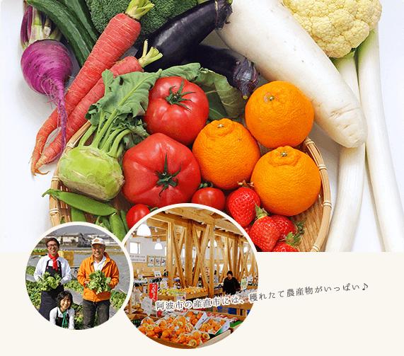阿波市の産直市には、穫れたて農産物がいっぱい。