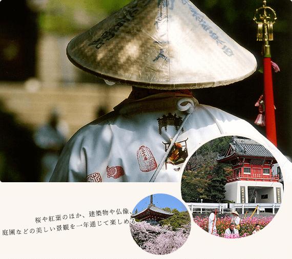 桜や紅葉のほか、建築物や仏像、庭園などの美しい景観を一年通じて楽しめる。