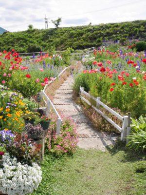 陶花のお庭の写真