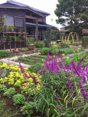 美柚ガーデンのお庭の写真